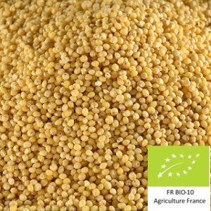 Volca millet : Malt de millet de base bio local et artisanal pour brasseurs professionnels et amateurs Auvergne